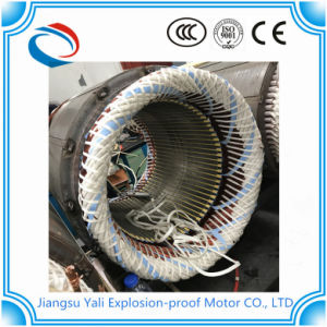 Ly Three-Phase Asynchronous Motor for Heat Treatment Furnace pictures & photos