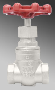 316 Stainless Steel 200psi Gate Valve pictures & photos
