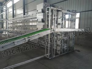 Full Automtic Battery Layer Cage