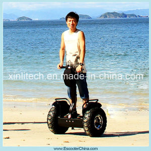 Chinese Scooter Manufacturers Monowheel Stand up Adult Electric Scooter pictures & photos