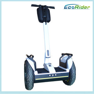 China Indoor 2 Wheel Balance Vehicle, Ecorider Stand up Electric Bike/ Electric Scooter pictures & photos