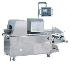 Vegetable Pillow Type Packing Machine (RZ) pictures & photos