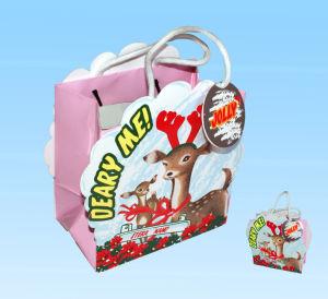 Gift Bag / Paper Bag / Hand Bag
