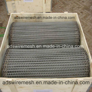Ads First Class Stainless Steel Conveyor Belt pictures & photos