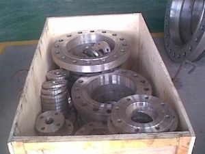 DIN 1.4462 Alloy Steel Flanges Ring pictures & photos