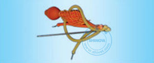 Uterus Washing Device (Bovine/Equine) (VSR-77) pictures & photos