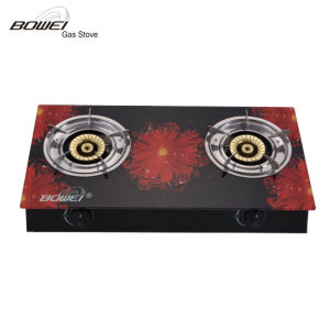 Competitive Price Tempered Glass Double Burners Gas Oven Cooker