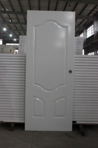 with Optional Colors and Designs Steel Door pictures & photos