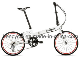 "Fation 20""Gear Aluminum Alloy Light Folding Bike/Floding Bicycle/Special Bike pictures & photos"