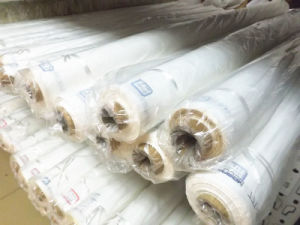 36t Polyester Screen Printing Mesh pictures & photos