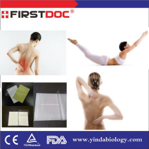 2016 Hot Sale Muscle Pain Relief Patch Herbal Magnetic Patch for Pain Relief pictures & photos