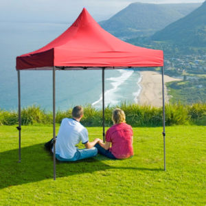 2.5X2.5m Outdoor Easy up Heavy Duty Folding Gazebo Tent pictures & photos