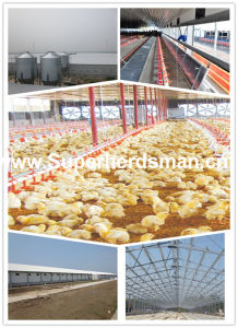 Prefabricat; ED Poultry Shed with Full Set Automatic Poutry Equipment pictures & photos