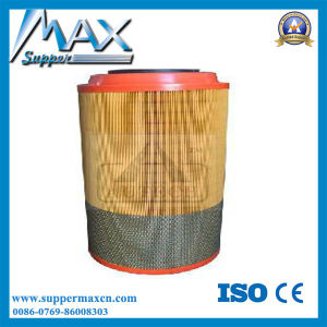 Air Filter Wg9725190102 pictures & photos