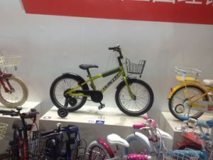 The Best Quality Bike for Boys pictures & photos