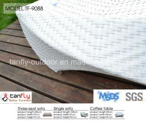 Leisure Design Luxury White Wicker Rattan Garden Patio Furniture pictures & photos