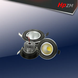 30W COB LED Down Light/Downlight pictures & photos