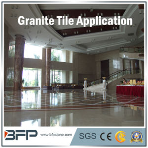 Project Material Natural Granite/Slate/Marble Tile for Floor Wall Interior pictures & photos