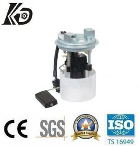 Electric Fuel Pump Module for Lada (KD-A251) pictures & photos