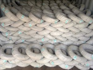 Galvanized Iron Wire Made in China Is on Hot Sale pictures & photos