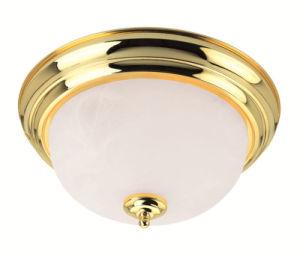 Moderm Simplism Style Ceiling Light (7118-02)