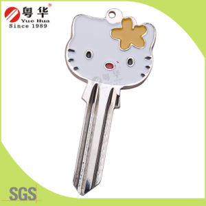 Wholesales Cheap Custom Colorful Key Blank pictures & photos