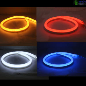 DC24V LED Neon Flex with 2 Years Warranty pictures & photos