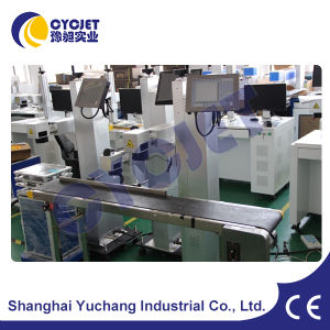 Fly CO2 Laser Marking Machine for Beverage Filling Machine pictures & photos