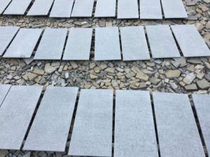 Compeitive Bluestones, Bluestone Flooring and Bluestone Wall Tiles pictures & photos