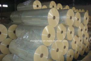 PE Coated Release Paper in Jumbo Roll Ss-Pej01