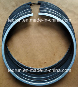 Piston Rings 40033365 pictures & photos