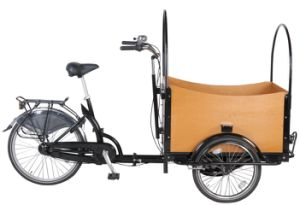36V 250W Electric Tricycle Cargo Bike pictures & photos