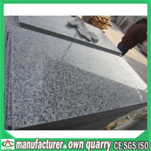 Cheap Polished 60X60 Granite for Niro Price pictures & photos