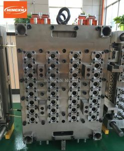 Pin Valve Gate Hot Runner Pet Preform Mould pictures & photos