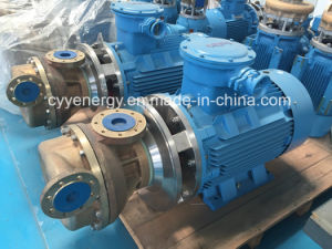 Cyyp19 High Quality and Low Price Horizontal Cryogenic Liquid Transfer Oxygen Nitrogen Coolant Oil Centrifugal Pump pictures & photos