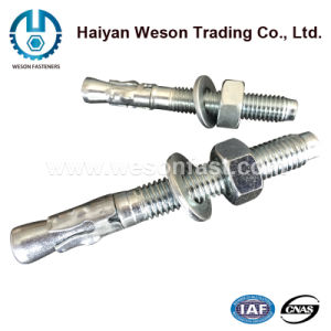 Stainless Steel Wedge Anchor with Nut & Washer pictures & photos