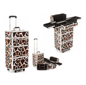 Salable Cosmetic Train Case (HX-A0727) pictures & photos
