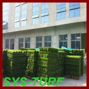 Newly Exported Small Roll Packing Grass with Pallets for Garden pictures & photos