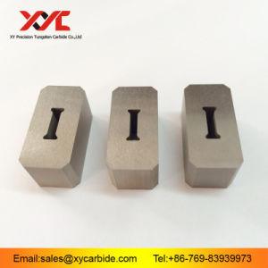 China Hot Sale Excellent Tungsten Carbide Dies/Female Dies pictures & photos