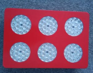 Red and Blue 6 Chip LED Grow Light pictures & photos