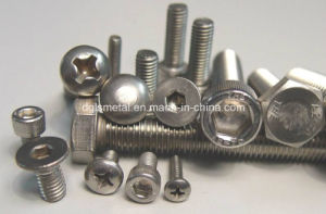 Stainless Stee304 Screw/Ss 304 Hexagon Head Bolt pictures & photos