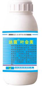 Lquid Magnesium Sulfate Fertilizer