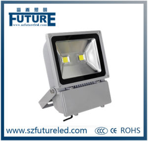 IP65 100lm/W COB 50W LED Flood Lamp with Ce RoHS pictures & photos