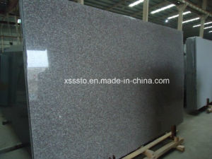 Polished Natural Granite G664 Kitchen Countertop pictures & photos