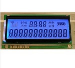 Segment Type LCD Display OEM pictures & photos