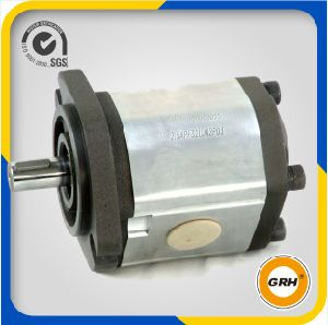 Bi-Direction External Cast Iron Hydraulic Gear Oil Pump pictures & photos