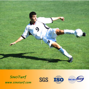 Artificial Grass Turf (diamond shape yarn) for Football, Soccer, Sports Fields pictures & photos