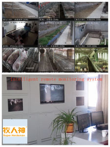 Intelligent Remote Monitor System in Poultry Farming House pictures & photos
