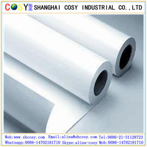 Inkjet Indoor Printing Paper PP Synthetic Paper pictures & photos