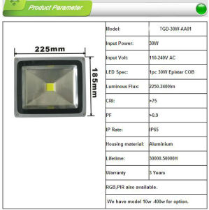 100W LED Flood Light LED Light pictures & photos